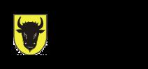 Město Zubří